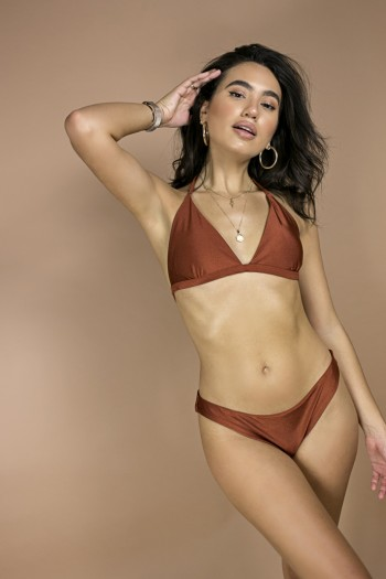 Alloy metallic brown bikini set